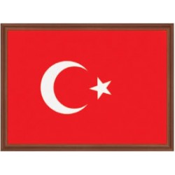 Türk Bayrağı 25*35